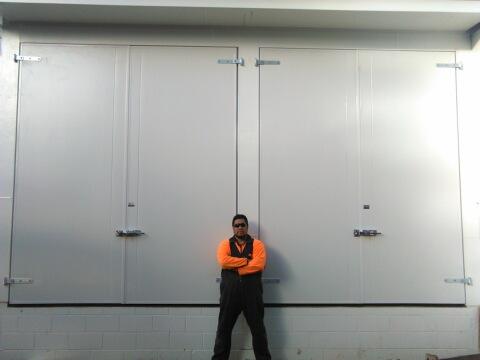 Hamilton Doors